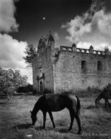 yucatan, uxmal, campeche, maya, church, ruin