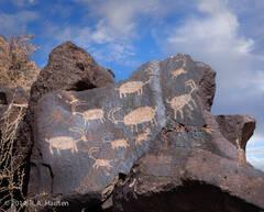 Big Petroglyph Canyon #32