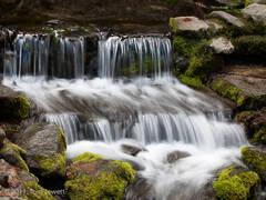 Yosemite, Fern Spring, cascade, moss, rocks, Tom Jewett