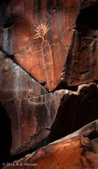 Little Petroglyph Canyon #70