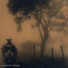Plate 43: Figure in Fog, Southern Mexico