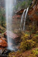 Zion Waterfall #1