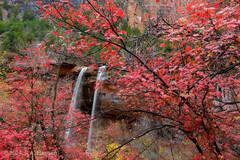 Zion Waterfall #2