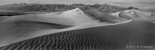 Dune #7
