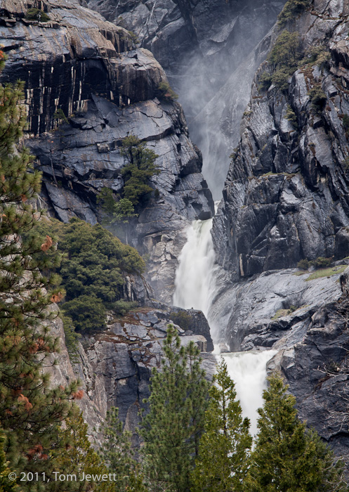 This view of pines and the lower two cascades is from the parking lot of the Yosemite Lodge. Photo by Tom Jewett.