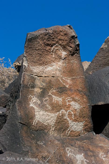 Rock art panel #1, Big Petroglyph Canyon