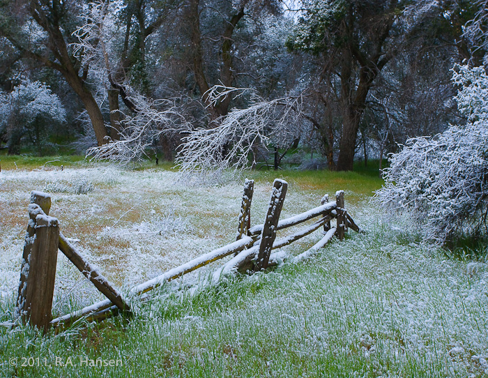 San Diego County, winter, fence, morning, frost, snow, trees, photo
