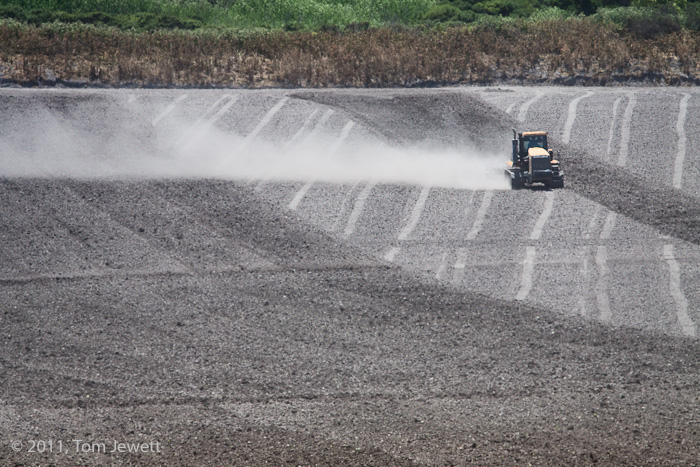 The Lompoc Valley is known for its flower agriculture, and this tractor, trailing dust from the field, is preparing for a new...