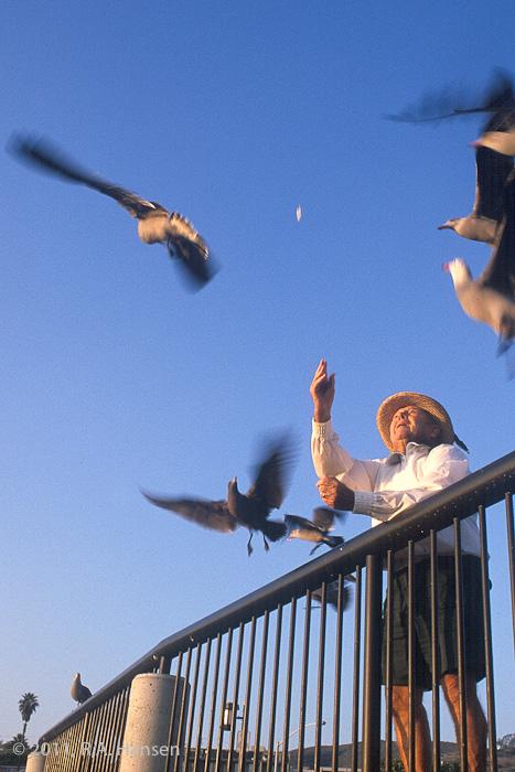 Hungry birds flock to a generous resident on Main Beach, Laguna