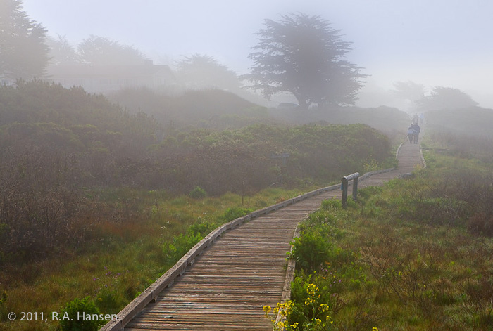 Visitors take a leisurely morning stroll in the lifting fog along this wood-paved path